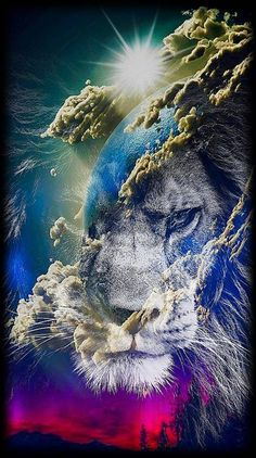 lion in the sky wallpaper by - - Free on ZEDGE™ Lion Images, Lion Pictures, Lion Wallpaper, Animal Wallpaper, Lion Couple, Lion Photography, Funny Animals, Cute Animals, Lions Photos