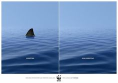 WWF Animal #Marketing #Advertising #Adv