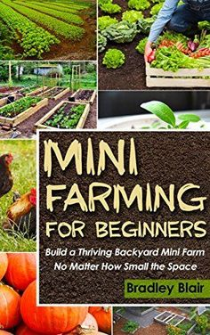 Mini Farming For Beginners: Build A Thriving Backyard Mini Farm, No Matter How Small The Space (Homesteading - Backyard Gardening - Handbook - Organic) by Bradley Blair, http://www.amazon.com/dp/B00PPPTYBG/ref=cm_sw_r_pi_dp_KP2Aub1GK800X