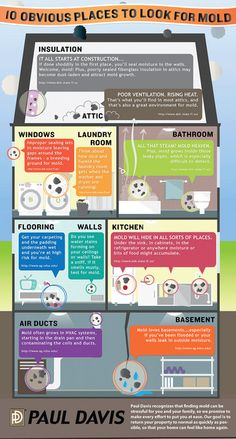 10 Obvious Places to Look for Mold Symptoms Of Mold, Cleaning Mold, Cleaning Hacks, Mold Exposure, Types Of Mold, Best Indoor Plants, Diy Cleaners, Home Repairs, Mold And Mildew