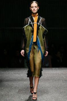 Prada Fall 2014 Ready-to-Wear Fashion Show - Ine Neefs