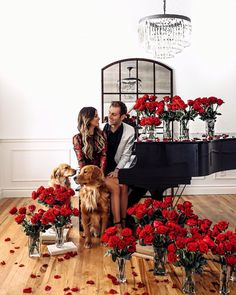this is the perfect cute couple's photoshoot idea with the vases of red roses, rose petals on the floor, and grand piano. #photoshoot #cutecouples #couplegoals Cute Couple Outfits, Cute Fall Outfits, Fit Couples, Prom Couples, Classy Couple, Luggage Reviews, Photography Business, Guys And Girls, Rose Petals
