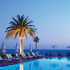 Palm trees by pool