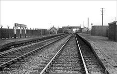 Disused Stations:Wetherby Racecourse Station Disused Stations, By Train, North Yorkshire, Railroad Tracks, Google Images, Train Stations, Buses, Trains, Busses