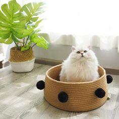 Universal Cat Bed Puppy Kennel, Diy Dog Kennel, Puppy Beds, Dog Bed, Pet Beds, Portable Dog Kennels, Cheap Dog Kennels, Wooden Dog Kennels, Cheap Cat Beds