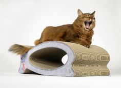 cat-on Le Fish  cat scratcher - handmade out of premium quality cardboard - Made in Germany