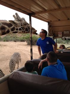 Getting up close & personal with the animals at Out Of Africa!                          -Camp Verde, AZ