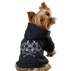 """Deslys Pet Grooming on Instagram: """"We got in new sweaters zack and Zoe brand. We have only a few available, so shop soon to get one for your best friend. They are $13.99…"""""""