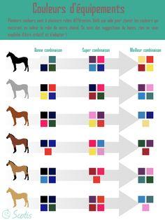 Infographie équestre pour aider les cavaliers à choisir la couleur de l'équipement de son chevaux
