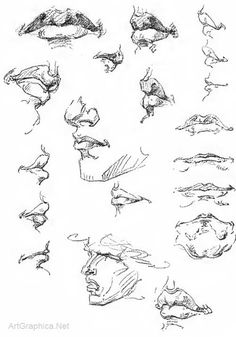 Drawing Ears, Eyes, Mouth and Nose Page 08 / 12 Art Book for Learning Human Anatomy - See more at: http://www.artgraphica.net/free-art-lessons/constructive-anatomy-george-bridgman/anatomy-eyes-ears-mouth-nose.html#sthash.gLgKOtoP.dpuf  Mouth