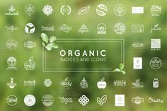 Organic, natural and vegan badges by venimo on @creativemarket