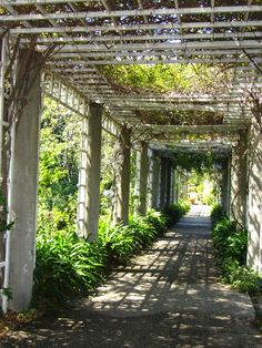 A Day In The Lalz: #TBT | SoCal Throw Back Travel, California, LA, The Huntington, Garden, Roses,