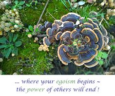 ... where your #egoism begins ~ the #power of others will end ! ( #Samara )