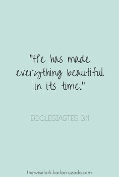Ecclesiastes 3:11 Bible Verse Quote