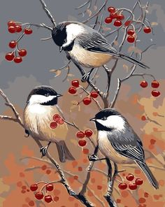 Buy Three Birds Animals Modern Picture Unique - DIY Paint By Number kit or check our new modern collections for adults paint by numbers. Relax and enjoy your canvas painting Bird Painting Acrylic, Fruit Painting, Acrylic Painting Canvas, Diy Painting, Canvas Art, Canvas Size, Art Projects For Adults, Easy Art Projects, Kit Pintura