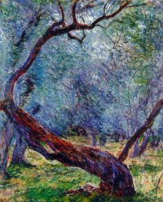 Artist: Claude Monet Olive Trees (Study) Completion Date: 1884 Style: Impressionism Genre: landscape , from Iryna Claude Monet, Renoir, Monet Paintings, Landscape Paintings, Vincent Van Gogh, Van Gogh Pinturas, Tree Study, Camille Pissarro, Impressionist Paintings