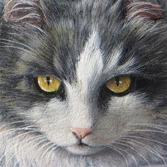 Sassi dipinti gatti | Ritratti di gatti su pietra -R.Rizzo