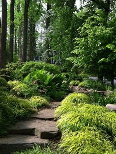 Deer Resistant Shade Garden Design Ideas, Pictures, Remodel and Decor