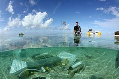 UQ's David Kline says the aim is to get a better picture of how reefs of the future respond to changed climatic conditions. Simulating the future: part of the underwater carbon dioxide trial on a coral reef off Heron Island