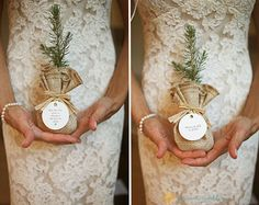 """sapling wedding favor with """"love grows"""". I think this would be great for any take home plant"""