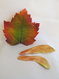 gumpaste, sugar,edible, leaves fall colored, cake topper, wedding, cake decorations. $2.00, via Etsy.