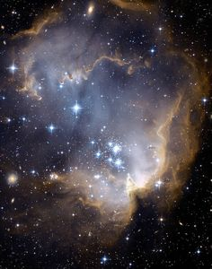 Infant Stars _ This incredible image taken with NASA's Hubble Space Telescope depicts bright, blue, newly formed stars that are blowing a cavity in the center of a star-forming region in the Small Magellanic Cloud.