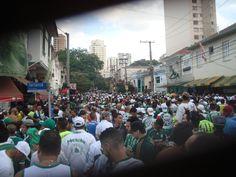 #TORCIDA QUE CANTA & VIBRA  #MV #ISOPORCO #CONLABIRRA #PALMEIRAS #MANCHAVERDE