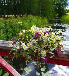 Sommarmorgon!🍀. #påpromenad #summermorning #solsken #flora #vildablommor #ån #sunshine #instaphoto #bukett #flowerstyles_gf #blommor #fiori #blumen #natur #nature #ig_sweden #pålandet #floweroftheday #fångadagen #naturlovers #sommar #juli #2016