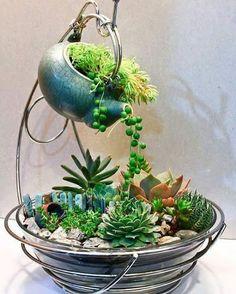 Mini jardines con fuentes y teteras ya en desuso