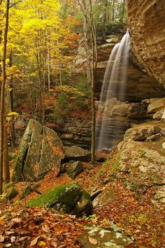 Anglin Falls, Berea KY one of the prettiest places ive been to yet!