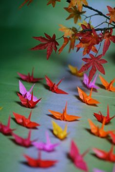 origami cranes - complementary colors red and green
