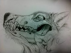 You run with the hounds while I hunt like a wolf Animal Sketches, Animal Drawings, Drawing Sketches, Art Drawings, Sketching, Wolf Tattoos, Skull Tattoos, Dog Skull, Skull Sketch