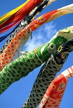 flying carps-koinobori-Japan for the Boys Day (Children's Day). Japanese Boy, Japanese Culture, Japanese Colors, Boys Day, Child Day, The Last Samurai, All About Japan, House Of The Rising Sun, Carpe Koi