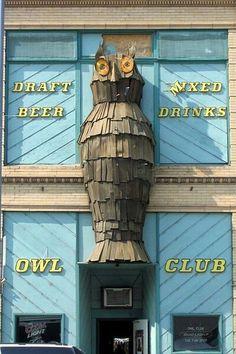 Owl club