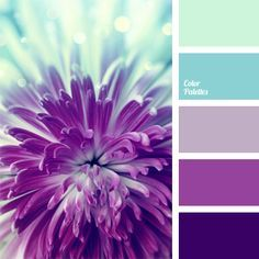 Palette of cold floral shades of blue and purple, translucent and saturated: hydrangea, lilac, fuchsia. Perfect palette for spring jewelry! Colour Pallette, Color Palate, Colour Schemes, Color Combos, Purple Color Palettes, Nursery Color Schemes, Wedding Colour Palettes, Wedding Colors, Purple Paint Colors