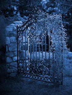 cool gate for moonlight garden Midnight Garden, Midnight Blue, Gothic Landscape, Portal, La Reverie, Moon Garden, Iron Gates, Love Blue, Garden Gates