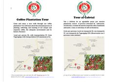 Coffee Plantation Tour awaits you!