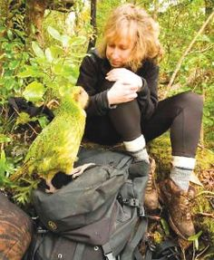 Greenwich Celebrates Kakapo Parrot Day with film, fun, food & Friendship- Dec. This was done in CT, USA because a 13 Yr old boy put the Kakapo cause in lieu of gifts at his Bar Mitzvah. (I love you Aaron)EM PS. Kakapos never leave NZ Flightless Parrot, Kakapo Parrot, Kinds Of Birds, All Birds, Little Birds, Bird Pictures, Pretty Pictures, Pretty Pics, In Lieu Of Gifts