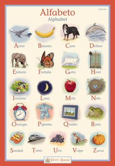 Children's Italian Alphabet Poster by CarouselofLanguages on Etsy, $28.00