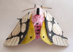 Textile Moth and Butterfly Sculptures by Yumi Okita textiles sculpture moths insects butterflies Art Fibres Textiles, Textile Fiber Art, Sculpture Textile, Soft Sculpture, Abstract Sculpture, Bronze Sculpture, Giant Moth, Papillon Butterfly, Butterfly Art