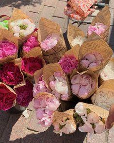 My Flower, Yellow Flowers, Beautiful Flowers, No Rain, Flower Aesthetic, Pink Aesthetic, Vintage Flowers, Peonies, Planting Flowers