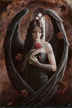 Angel Rose Poster