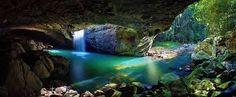 springbrook national park gold coast - Pesquisa Google