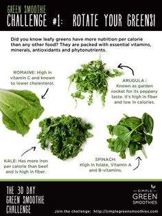 Simple Green Smoothies: Why You Should Rotate Your Greens and use a variety of leafy greens in your smoothies like kale spinach chard (silverbeet) romaine and other lettuces herbs and carrot tops. Easy Green Smoothie Recipes, Green Smoothie Cleanse, Healthy Green Smoothies, Juice Cleanse, Simple Smoothies, Smoothie Packs, Breakfast Smoothies, Smoothie Diet, How To Make Smoothies