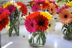 colorful Gerberas Banquet Centerpieces, Colorful Centerpieces, Wedding Centerpieces, Wedding Table, Daisy Bridal Bouquet, Daisy Wedding, Wedding Flowers, Mexican Party Decorations, Wedding Shower Decorations