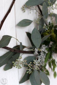 Oravanpesä: KRANSSITEHTAILUA. Plant Leaves, Plants, Flora, Plant, Planting