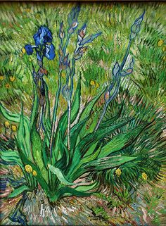 Vincent Van Gogh Iris 1000 Piece Puzzle: Claude Monet was a founder of French impressionist painting, and the most consistent and prolific pra Art Van, Van Gogh Art, Fleurs Van Gogh, Van Gogh Flowers, Vincent Van Gogh Werke, Desenhos Van Gogh, Van Gogh Pinturas, Van Gogh Paintings, Flower Paintings