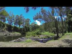 Camping Grounds Gold Coast Hinterland : Spring Gully Stays Sarabah Near Cunungra Gold Coast Hinterland Qld
