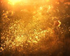 Dandelion feeling (re-edit.) - null