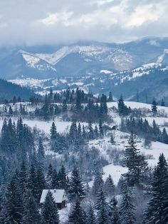 Carpathian Mountains | Ukraine. They provide the habitat for the largest European populations of brown bears, wolves, chamois, and lynxes, as well as over one third of all European plant species. The Carpathians stretch in an arc from the Czech Republic (3%) in the northwest through Slovakia (17%), Poland (10%), Hungary (4%) and Ukraine (11%) to Romania (53%) in the east and  the Iron Gates of the River Danube between Romania and Serbia (2%) in the south. Saiga Antelope lives in the…